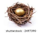 Golden egg in bird's nest over white background - stock photo