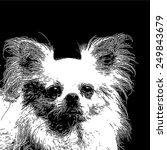 vector illustration of... | Shutterstock .eps vector #249843679