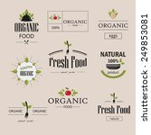 organic natural food vector... | Shutterstock .eps vector #249853081