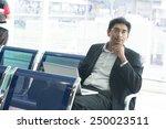 asian indian businessman... | Shutterstock . vector #250023511
