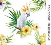 parrot  hibiscus  flowers ...   Shutterstock . vector #250027711