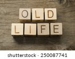 old life text on a wooden cubes | Shutterstock . vector #250087741