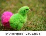 easter | Shutterstock . vector #25013836