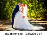 happy bride and groom on their... | Shutterstock . vector #250205389