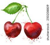 cherry vector logo design... | Shutterstock .eps vector #250208809