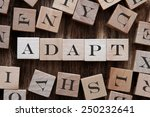 Small photo of text of ADAPT on cubes