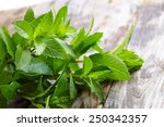 peppermint on wooden table | Shutterstock . vector #250342357