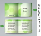 brochure template with abstract ... | Shutterstock .eps vector #250397101