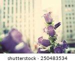 new york city spring | Shutterstock . vector #250483534