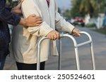 senior woman using a walker... | Shutterstock . vector #250524601