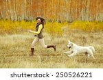 Stock photo young golden retriever for a walk with his owner dog breed labrador outdoors 250526221