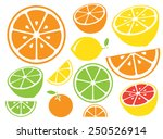 collection of citrus slices  ... | Shutterstock .eps vector #250526914