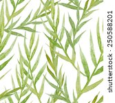 leaves  watercolor  pattern ... | Shutterstock . vector #250588201