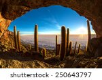 cave on the cactus island in... | Shutterstock . vector #250643797