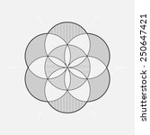 geometric element  circles ... | Shutterstock .eps vector #250647421
