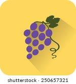 vine icon. flat design style... | Shutterstock .eps vector #250657321