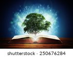 book or tree of knowledge... | Shutterstock . vector #250676284