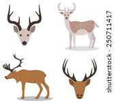 deer and their head   isolated... | Shutterstock .eps vector #250711417