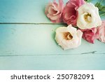 bouquet of eustoma flowers | Shutterstock . vector #250782091