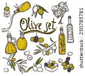 olive sketch decorative icons... | Shutterstock .eps vector #250785781