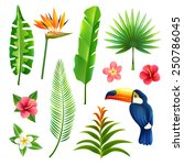 tropical gardens  leaves and... | Shutterstock .eps vector #250786045