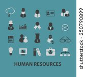 human resources  organization ...