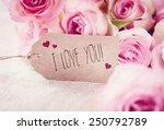 i love you    Shutterstock . vector #250792789