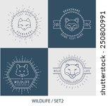 trendy retro vintage insignias... | Shutterstock .eps vector #250800991