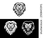 lion head in signs and labels | Shutterstock .eps vector #250845391