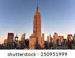 new york  new york   january 31 ... | Shutterstock . vector #250951999