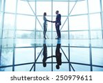 young business partners... | Shutterstock . vector #250979611