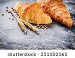 breakfast setting with fresh... | Shutterstock . vector #251102161