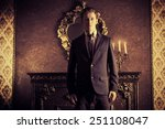 handsome respectable man in...   Shutterstock . vector #251108047