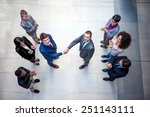 young multiethnic business... | Shutterstock . vector #251143111