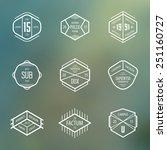 vintage insignia set for retro... | Shutterstock .eps vector #251160727