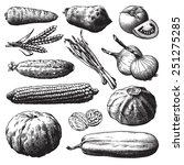 set of vegetables  fruits and... | Shutterstock . vector #251275285