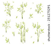 sprigs of bamboo of different...