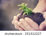 hand and plant | Shutterstock . vector #251312227