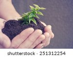 hand and plant | Shutterstock . vector #251312254