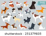 different breeds of dog. vector ... | Shutterstock .eps vector #251379835