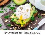 avocado sandwich | Shutterstock . vector #251582737
