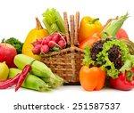 assortment vegetables and...   Shutterstock . vector #251587537