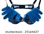 bra and glove | Shutterstock . vector #25164637