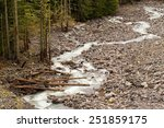 Nisqually Glacier Fed River An...
