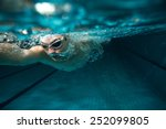 male swimmer at the swimming... | Shutterstock . vector #252099805