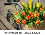 Bicycle Basket With Tulips