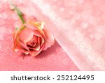 one pink rose on pink... | Shutterstock . vector #252124495