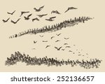 Hand drawn landscape with flying birds and fir forest, vintage vector illustration