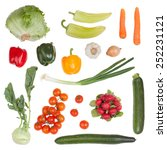 set of vegetable isolated on... | Shutterstock . vector #252231121