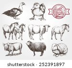 farm animals. set of vector... | Shutterstock .eps vector #252391897